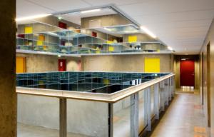 Intelligent kollegium i Aarhus